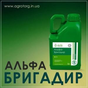 Альфа Бригадир гербицид