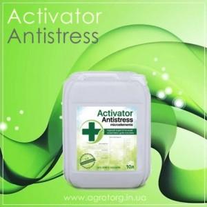Активатор Антистресс (Activator Antistress)