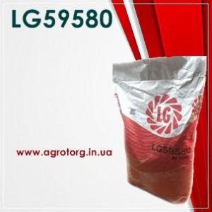 LG59580