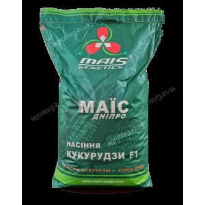 ДМС 3111 кукурудза