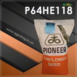 P64НЕ118 соняшник