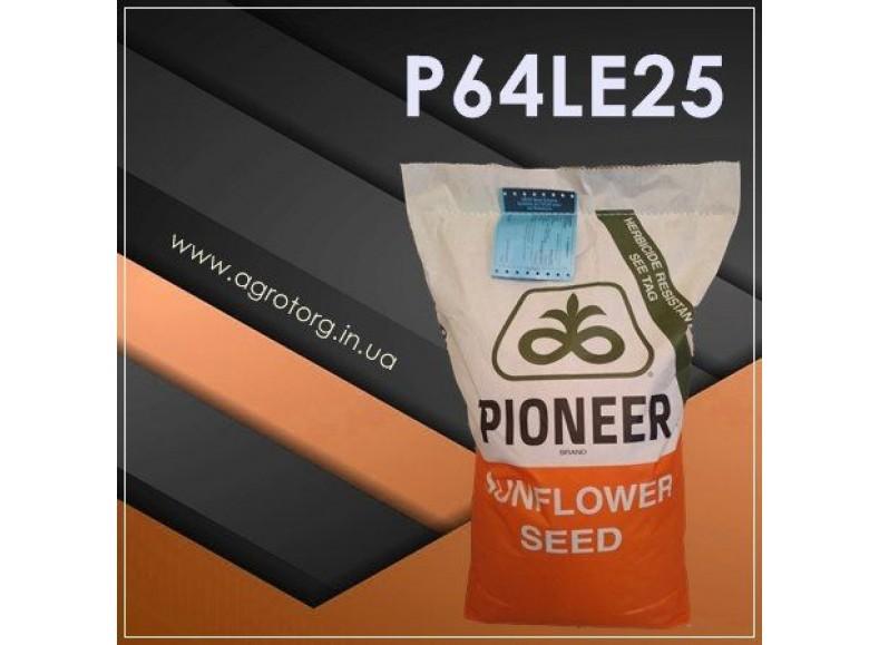 P64LЕ25 соняшник