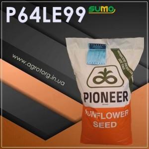 P64LЕ99 соняшник