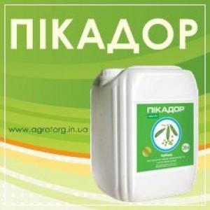 Пикадор гербицид