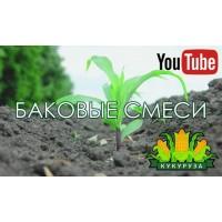 Гербіциди для кукурудзи (бакові суміші)
